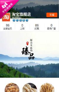 编号:935品味传统 传承经典-食品 茶叶 特产山珍干货肉脯等行业通用手机无线端模板