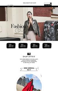 A-250-5以时尚之名-女装、女包、女鞋类行业专用旺铺专业版模板
