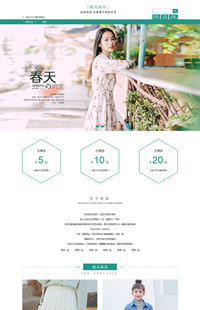 A-275-2春生弥漫-文艺女装、女鞋包类行业通用旺铺专业版模板