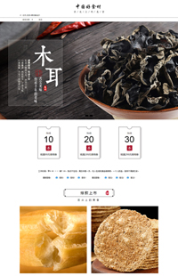 A-497-0中国好食材-食品行业通用旺铺专业版模板