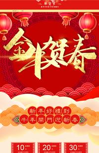 A-505-0过年不打烊 年货乐翻天-年货节、年底大促、新春节日专题专用全行业通用模板